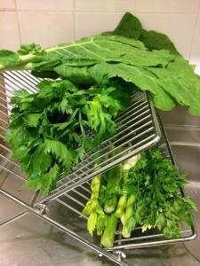 Verduras para o suco verde